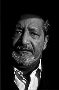 Image for V. S. Naipaul